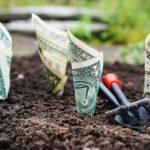 מהן חובות קרן הפנסיה כלפי החוסכים, שנקבעו בפסיקה ואינן מופיעות בתקנון?