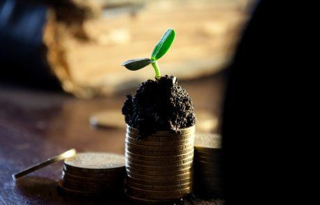הכלכלן הראשי: איזה מוסד אקדמי מבטיח את השכר העתידי הגבוה ביותר?